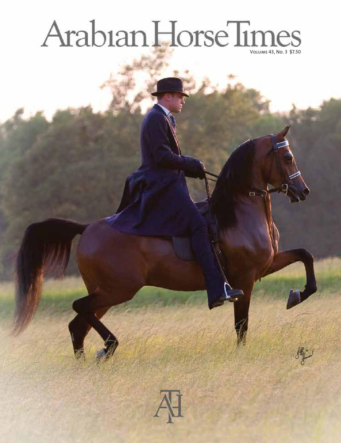 Arabian Horse Times Vol 43 No 3 By Arabian Horse Times Issuu