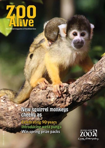 Zoo Alive Spring 2012 by Auckland Zoo issuu