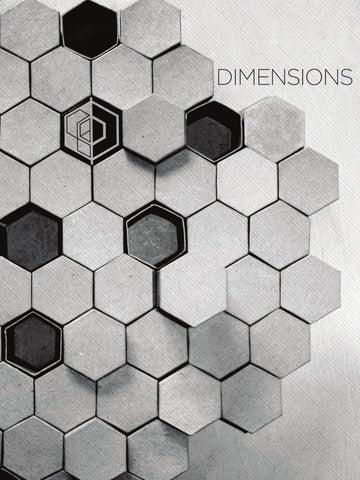Dimensions Festival 2012 Program