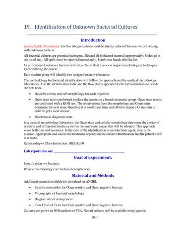 Updated Identification Of Unknown Bacteria By Myriam Feldman Issuu