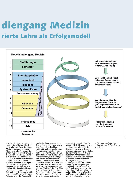 Berühmt Funktionen Von Herz Kreislauf System Zeitgenössisch ...