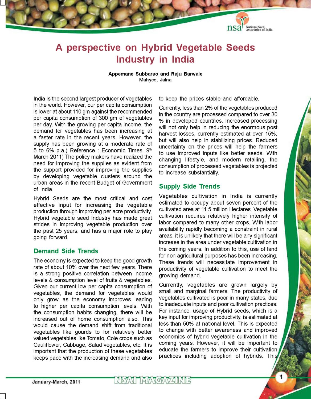 100 pcs vegetable Seeds purple Kohl Rabi F1 Hybrid Brassica oleracea