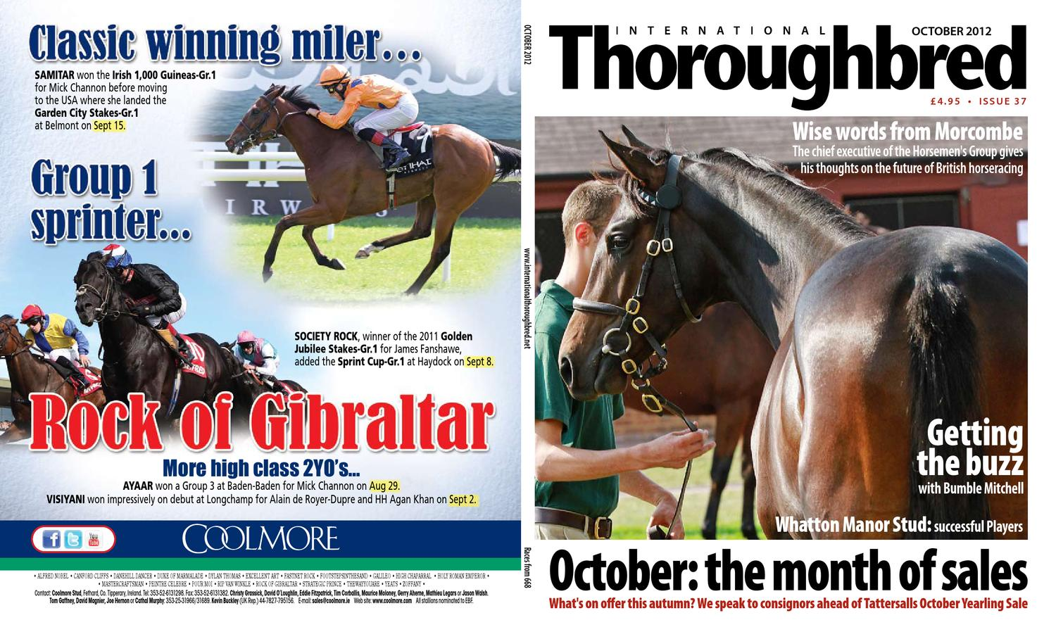 11c16be7899 International Thoroughbred October 2012 by Thoroughbred Publishing - issuu