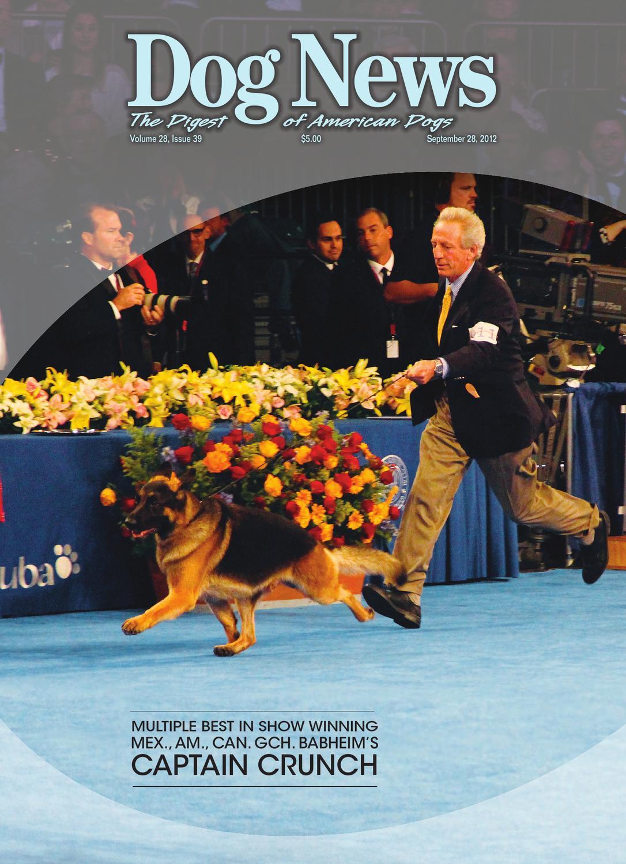 Scottie Scottish Terrier Dog Apples Crate Label Vintage Poster Repro FREE S//H