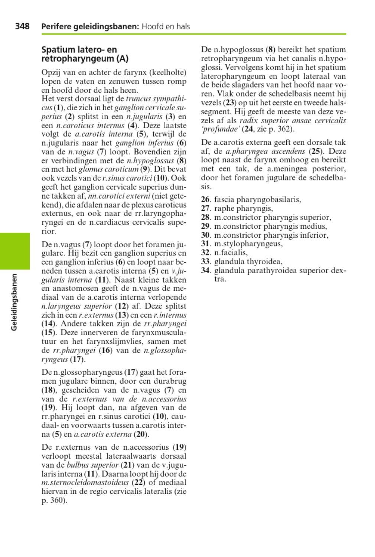 SESAM Atlas anatomie deel 1. Bewegingsapparaat by ThiemeMeulenhoff ...