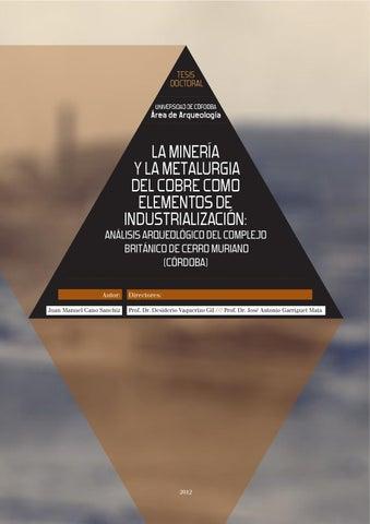 35ad042306db La minería y la metalurgia del cobre como elementos de ...