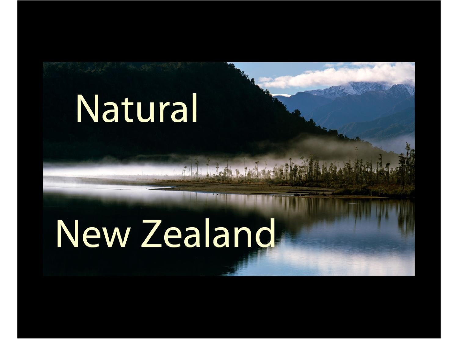 The New Zealand Natural Products Of Directory