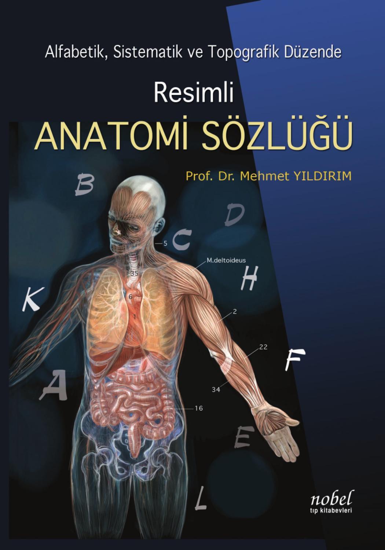 Vücut Ağırlığıyla Kanat (Latissimus Dorsi) Çalışması