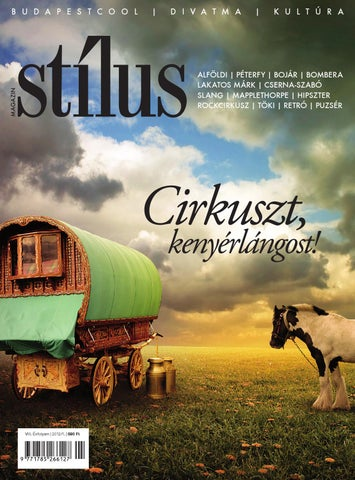 Stílus magazin 2012 1 by Business Publishing Services Kft. - issuu 62584a6cbf