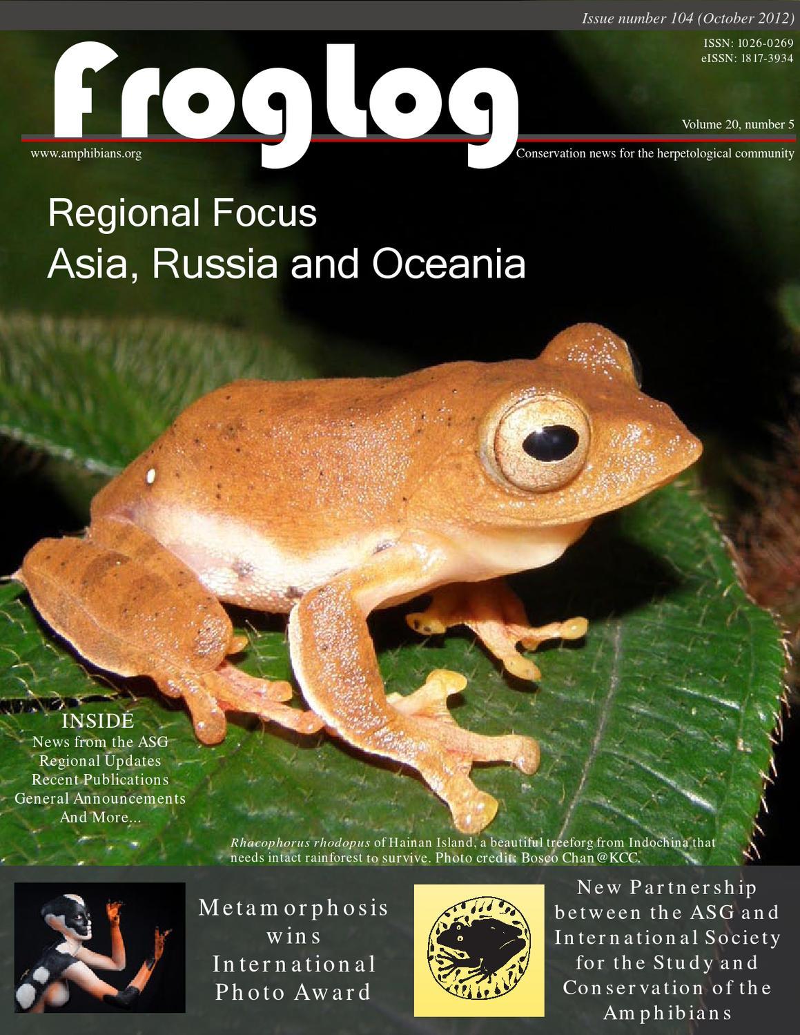 Aureolas Gigantes froglog 104amphibian survival alliance - issuu