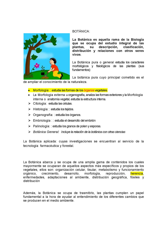 Botánica By Julia Cano Cancino Issuu
