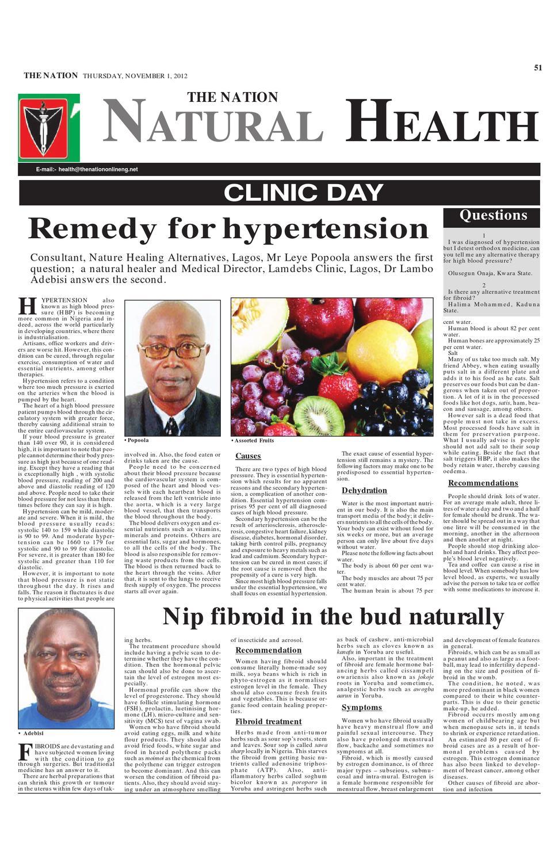 The Nation November 01, 2012