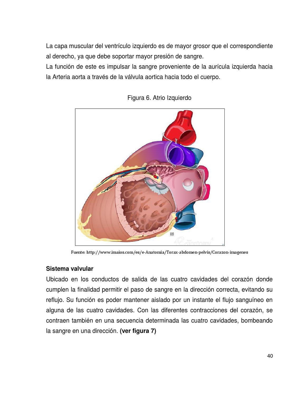 Libro Electrónico sobre Trasplante Cardiaco para Estudiantes de ...