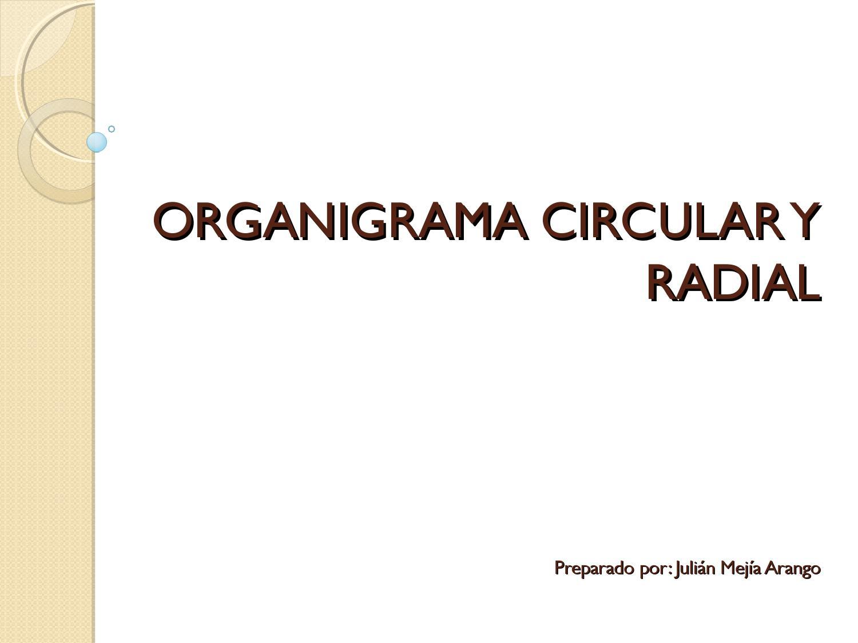 Organigrama Circular Y Radial By Julian Mejia Issuu