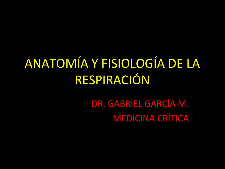 ANATOMÍA Y FISIOLOGÍA DE LA RESPIRACIÓN PARA HCAM by Educacion Aci ...