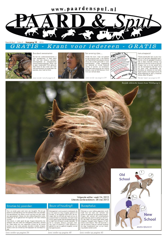 Paardrijden grote lullen blackboody
