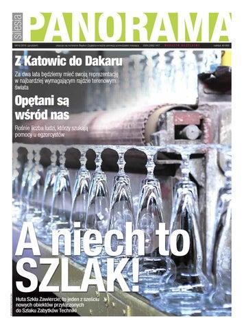 Panorama Silesia nr6_2010 by Panorama Silesia - issuu