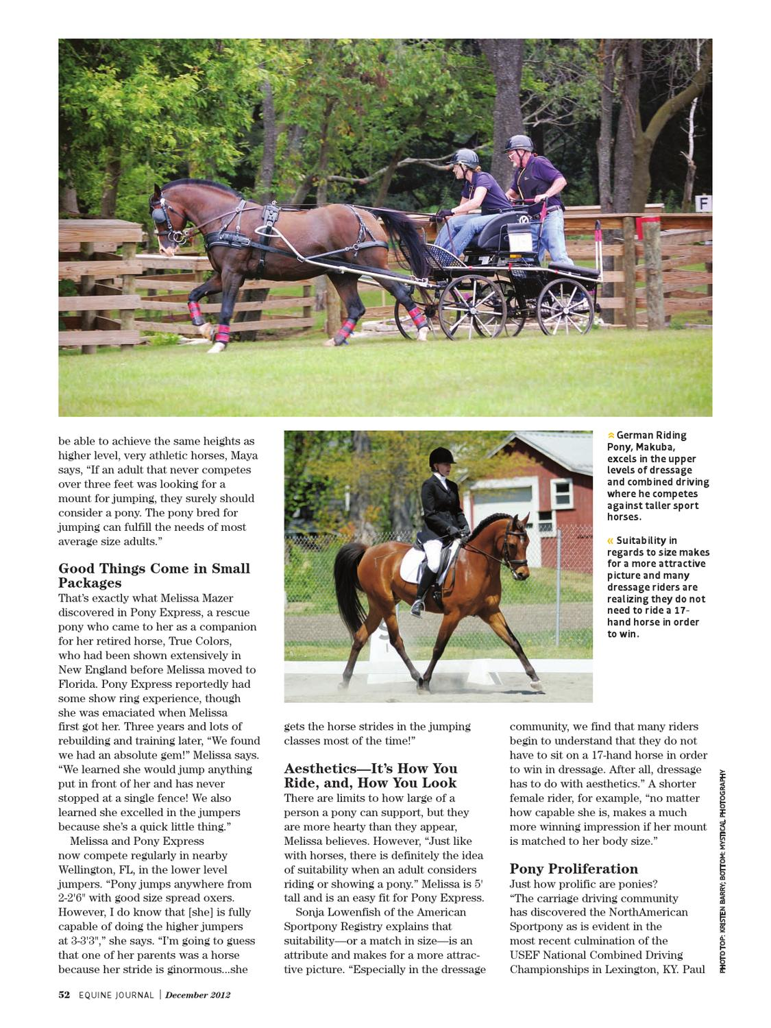 Equine Journal December 2012 By Equine Journal Issuu