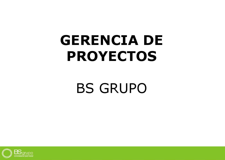 PROGRAMA EN GERENCIA DE PROYECTOS by Gonzalo Chong - issuu