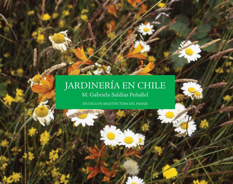 hierbas para adelgazar en chile volcan