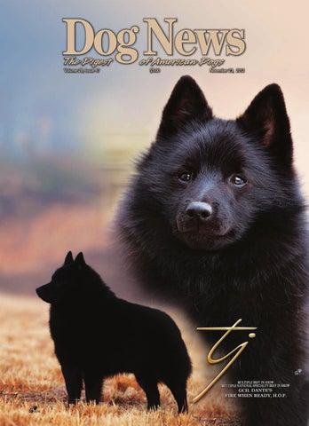Dog News, November 23, 2012 by Dog News - issuu