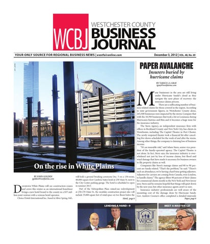 Westchester county business journal by wag magazine issuu page 1 wcbj westchester county business journal reheart Choice Image