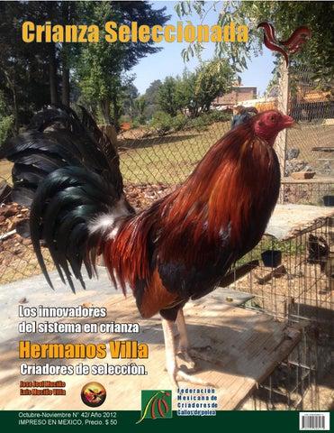 98af498c1830 revista de gallos de pelea by Karla Cynthia Montoya Sanchez - issuu