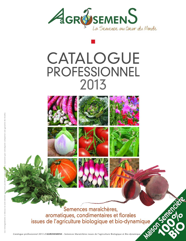 300-350 graines-légumes Pumpkin jack o lantern 50 grammes-env