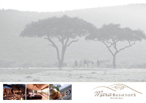 Atlas Mara | Company Brochure | Business Chief Africa