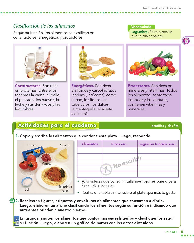 Alimentos energeticos protectores y constructores