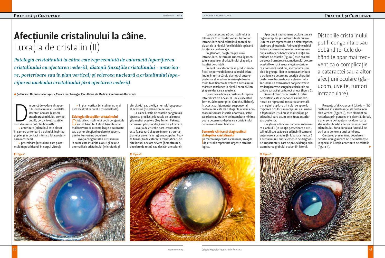 clasificarea leziunilor oculare)