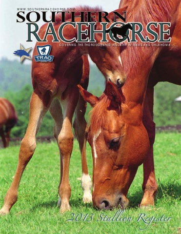 Southern Racehorse Stallion Register by American Racehorse (formerly