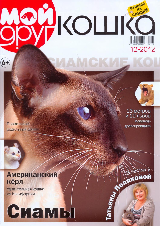 Питомники британских кошек голден стар г.кемерово казино вулкан с моментальным выводом денег на киви
