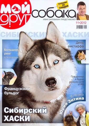 frends dog 11 2012 by Олеся Малахова - issuu 7da14464d58