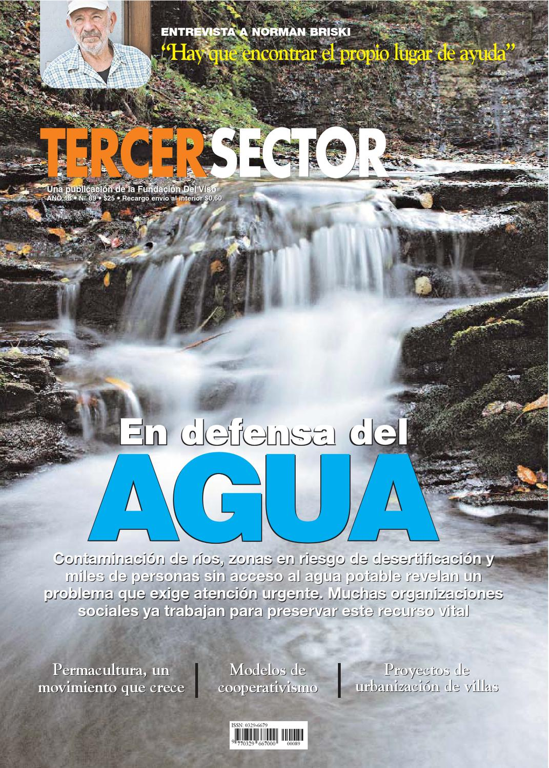Revista Tercer Sector N°89 by Tercer Sector - issuu 262f200568a