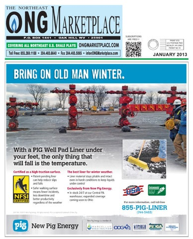 The Northeast ONG Marketplace - January 2013 by Northeast ONG - issuu