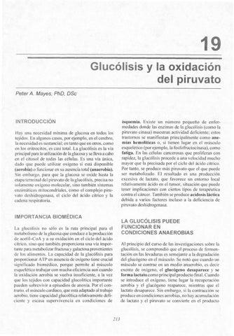 Glucólisis by Yolanda Salazar - issuu