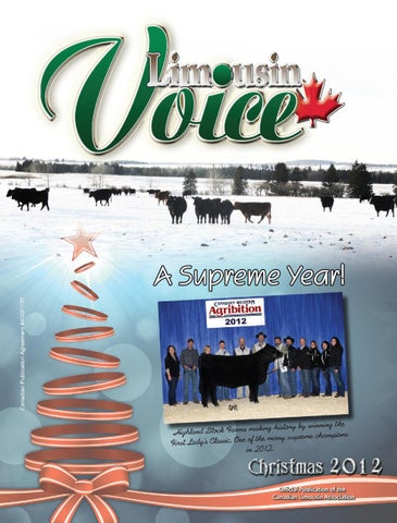 2012 Christams Limousin Voice