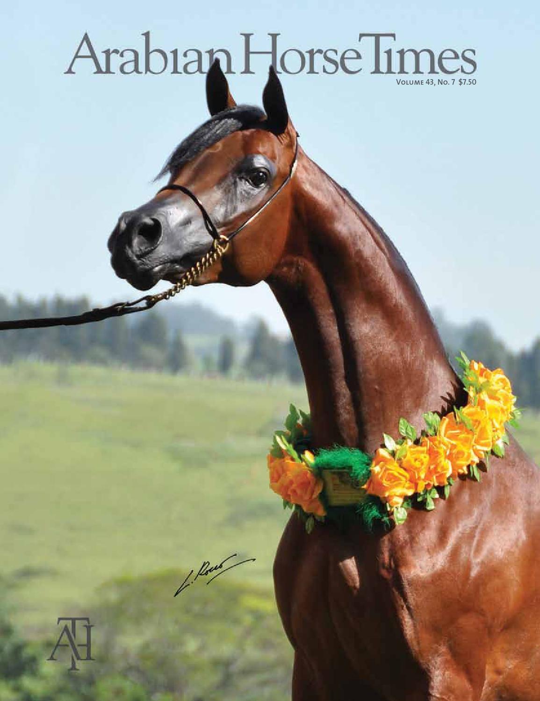 Arabian Horse Times Vol. 43, No. 7 by Arabian Horse Times - issuu