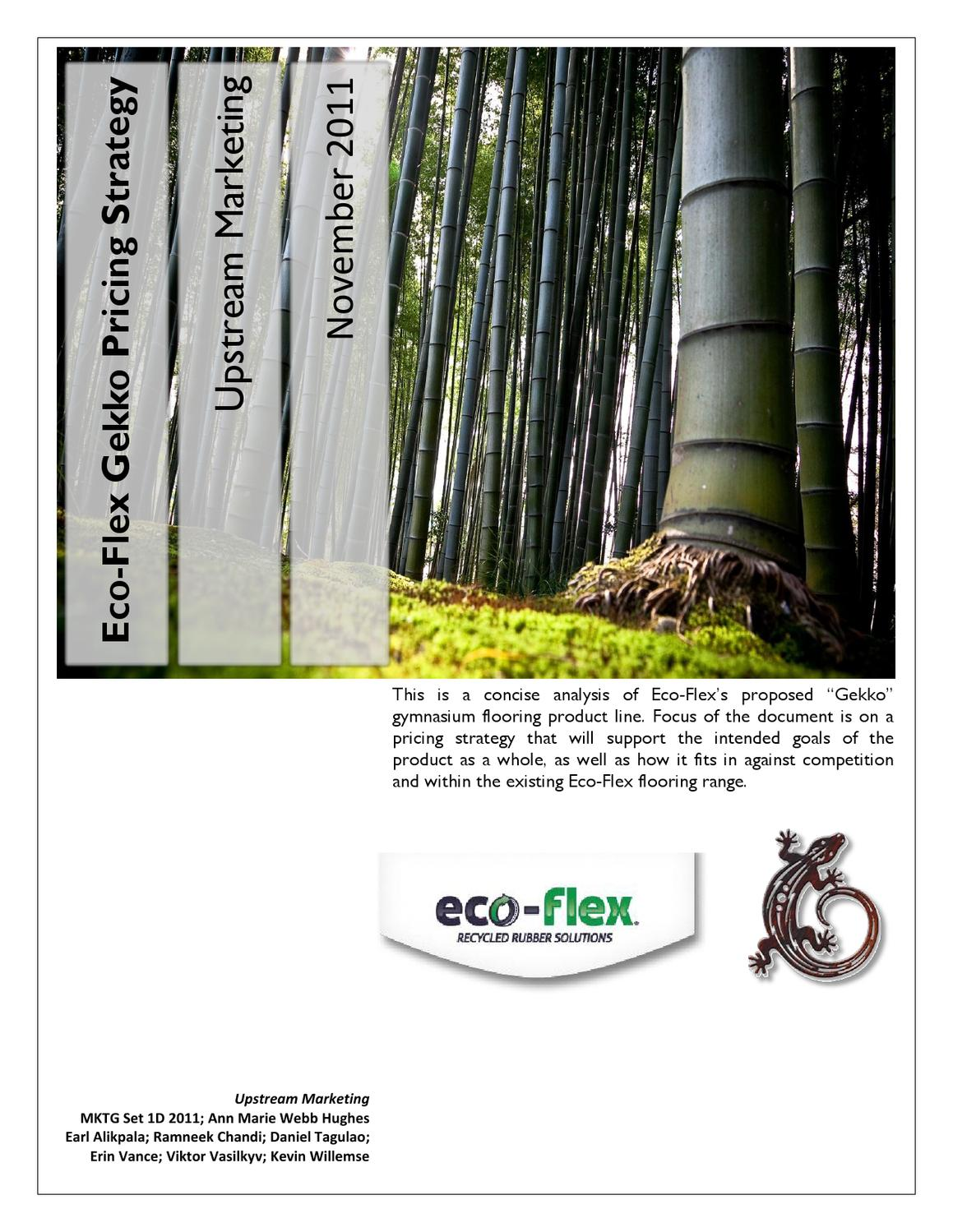 Marketing Campaign Proposal - Ecoflex