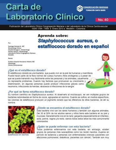 infeccion por staphylococcus aureus en piel
