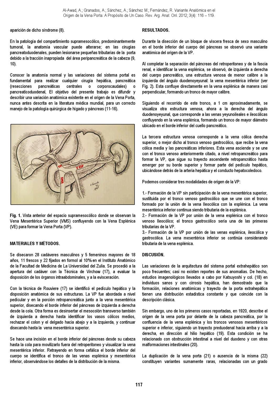 Revista Argentina de Anatomía Online 2012; 3(4):97-136. by Nicolas ...
