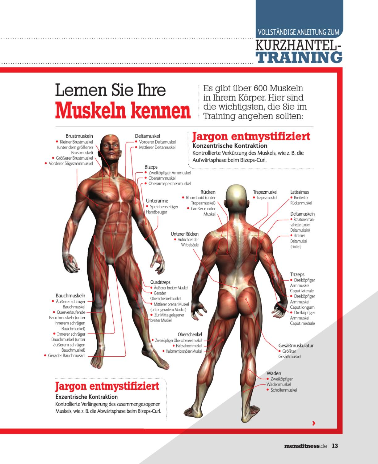 Men\'s Fitness - Training Guide by Ultimate Guide Media - issuu