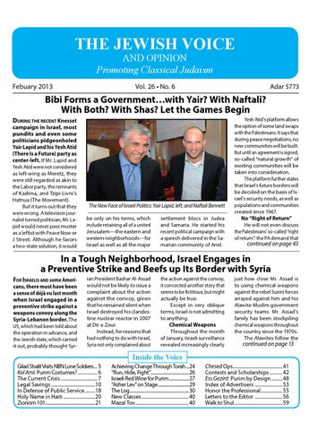 Jewish Voice and Opinion February 2013 by Susan Rosenbluth
