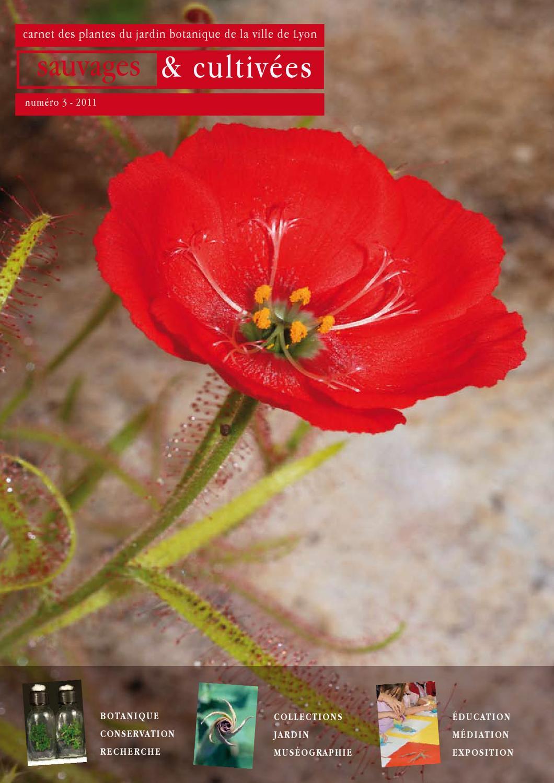 Potager 3 Etages Botanic sauvages et cultivéesjardin botanique - issuu