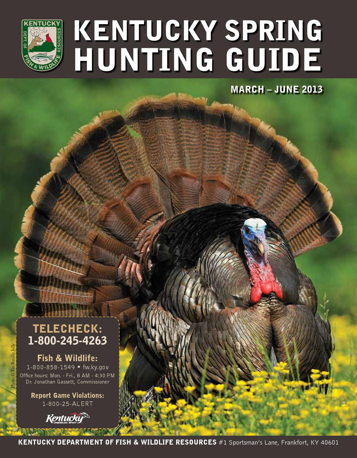 2013 spring hunting guide by kentucky department of fish for Ky fish and wildlife telecheck