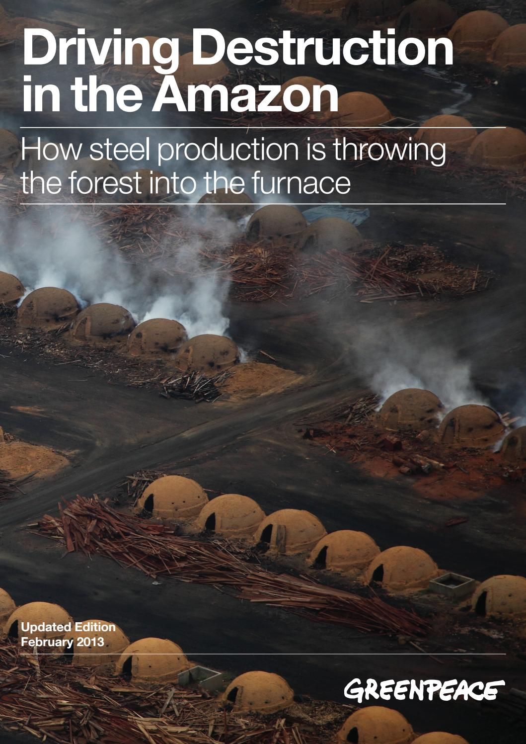 Driving Destruction In The Amazon By Greenpeace International Issuu