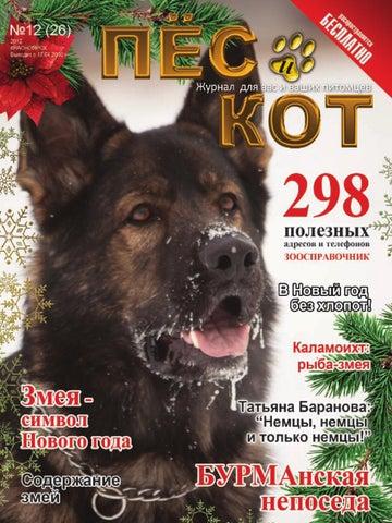 dog and cat by Alexandr Ignatev - issuu 96ae34bcce2c3