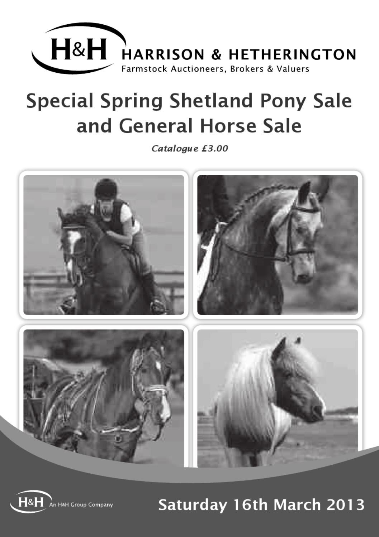 Horse Sale By Harrison Hetherington Issuu
