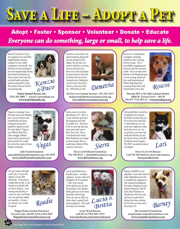 Las Vegas Pet Scene Magazine, March/April 2013 by Homes
